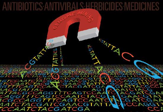 genomemining550.jpg