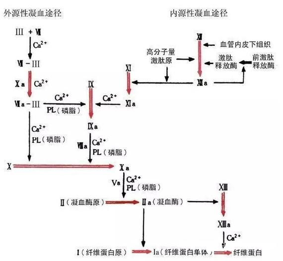 电路 电路图 电子 原理图 570_525